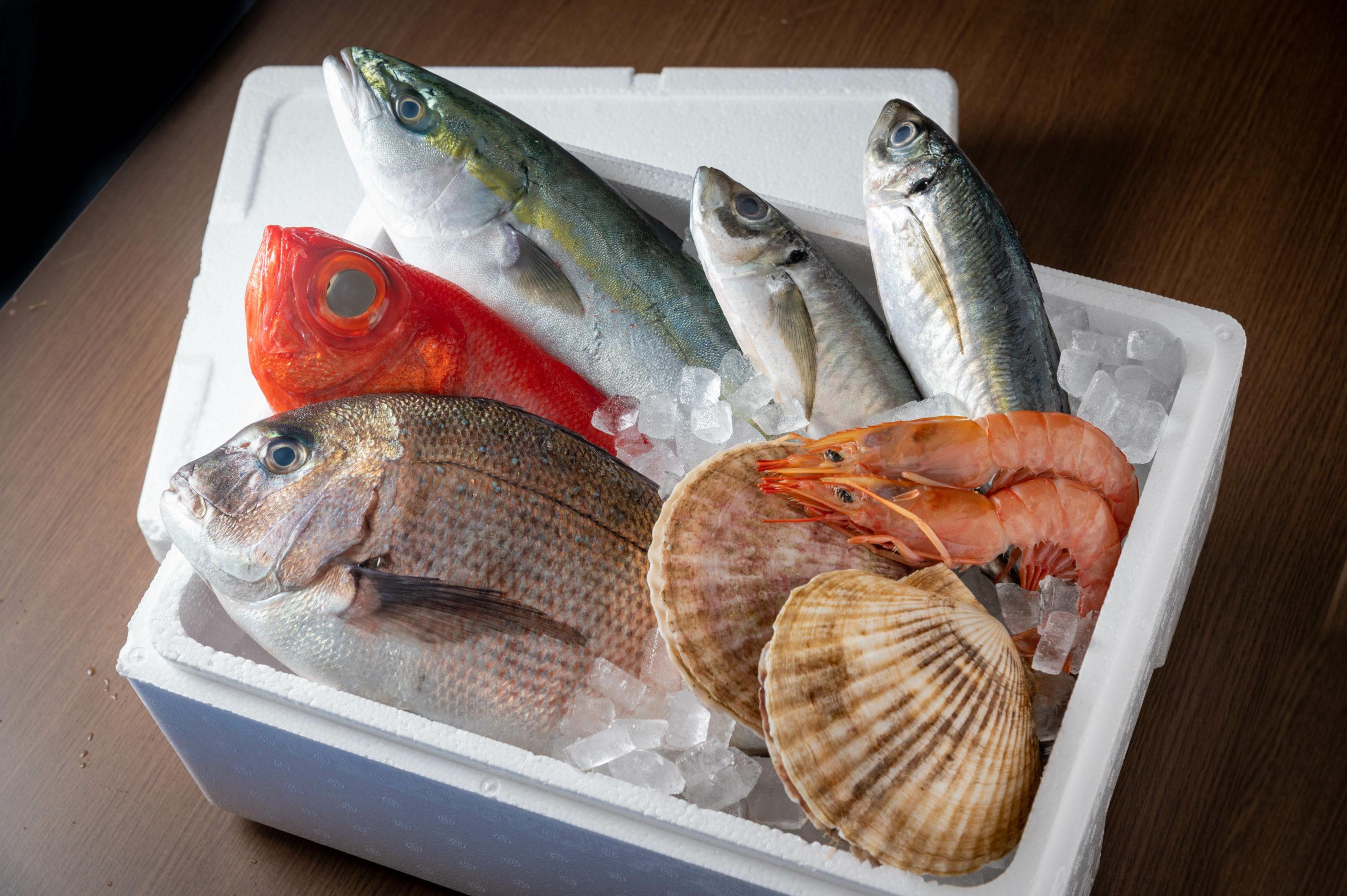 魚介類・鮮魚